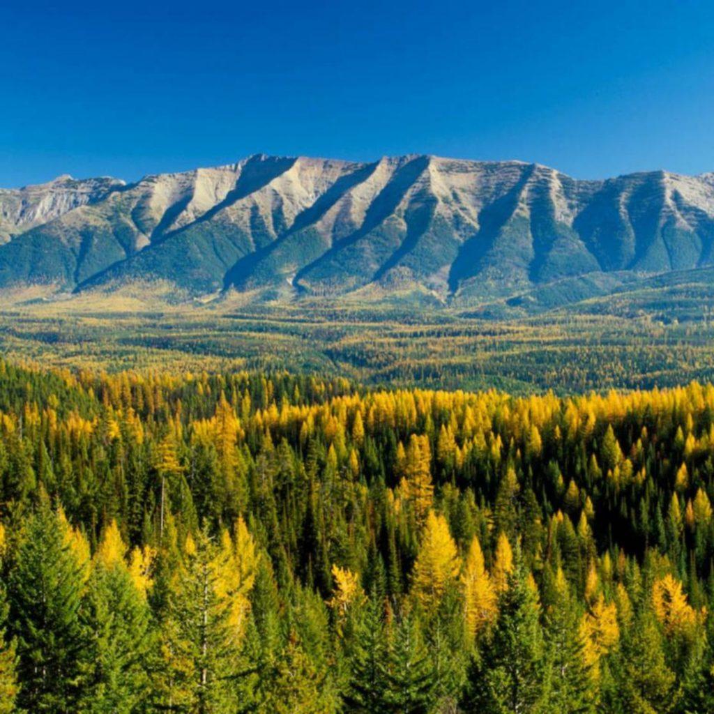 Montana mountains, values